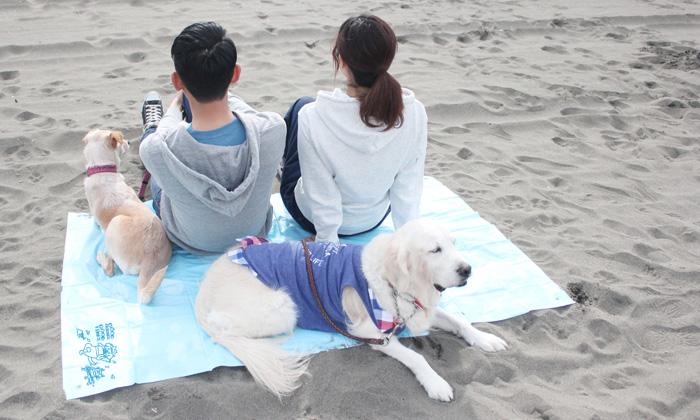 人2名と犬2頭がレジャーシートに座っている写真