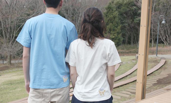 Tシャツ後ろ側の写真