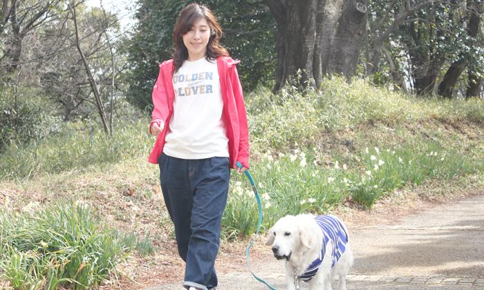 犬と散歩している写真