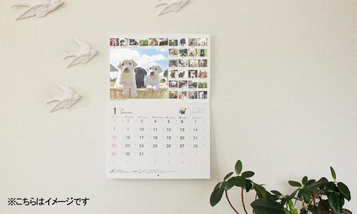 壁にかかったカレンダーの写真