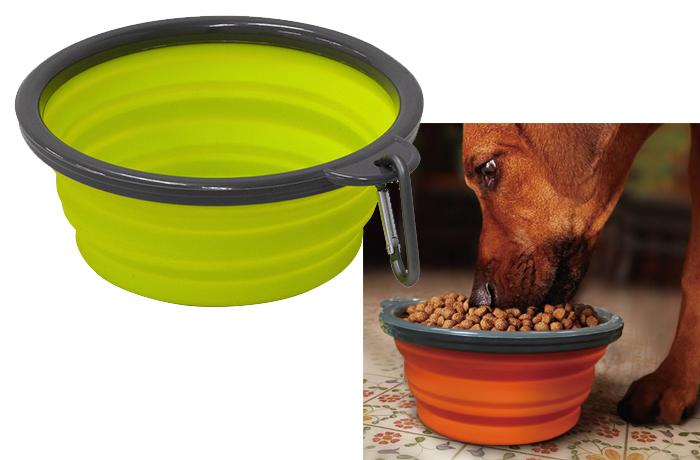大型犬の水飲みにちょうどいいサイズ