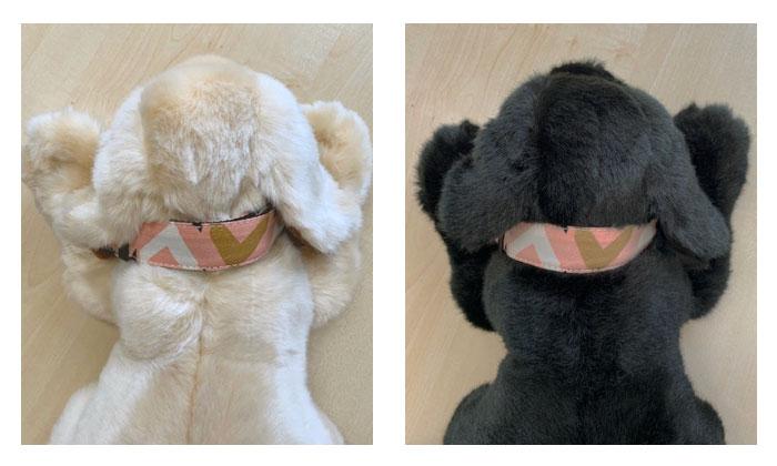 イエローとブラックの着用イメージ画像