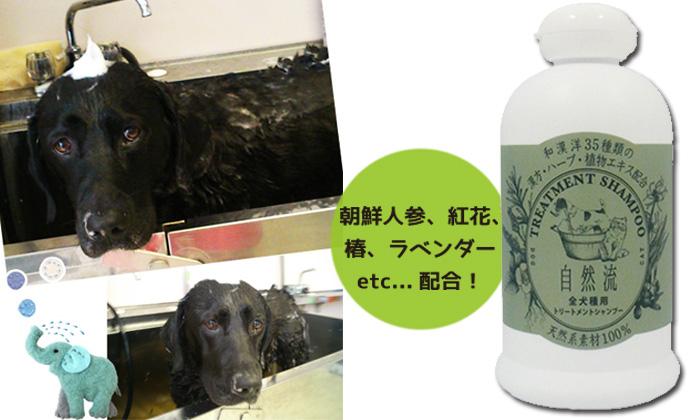 和 漢 洋35種類の漢方・ハーブ・植物エキス配合の 皮膚と被毛に優しいシャンプーです。