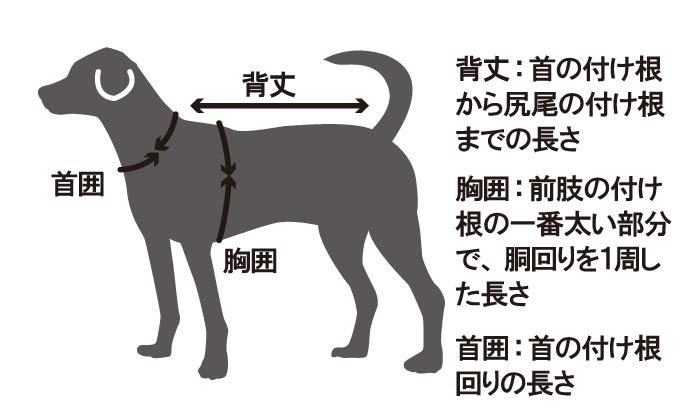 背丈、首の付け根から尻尾の付け根までの長さ。胸囲、前肢の付け根の一番太い部分で、胴回りを一周した長さ。首囲、首の付け根周りの長さ