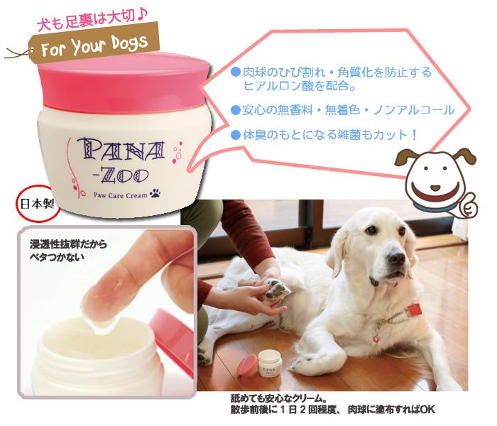 商品の説明写真