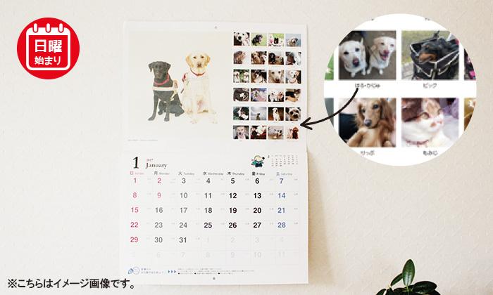 壁に掛けているカレンダーの写真