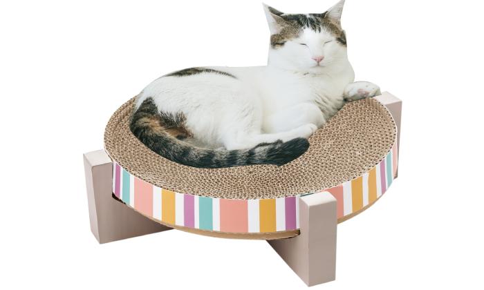 爪とぎの上で猫が寝ている写真