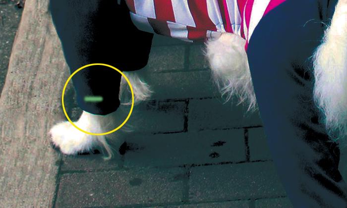 前足の袖口にレッドは1本、グリーンには2本の蓄光テープが付いています。