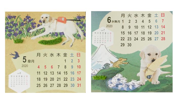 5月と6月の写真