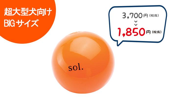ソルとと英語でプリントされたオレンジのボール
