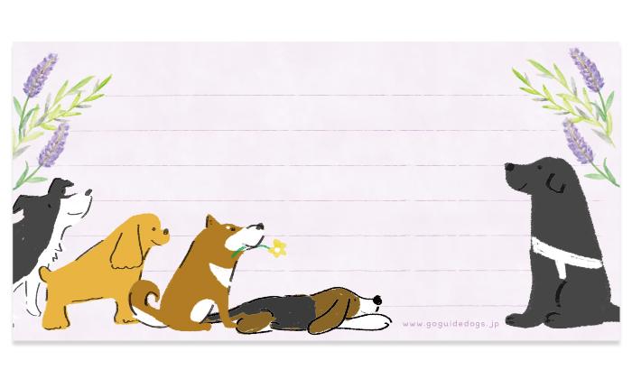 ボーダー、コッカー、柴、ビーグルと盲導犬のイラスト
