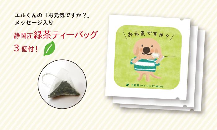 緑茶ティーバッグ写真
