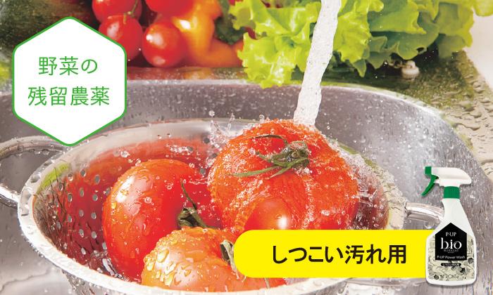 野菜を洗う写真