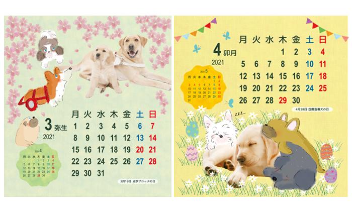 3月と4月の写真