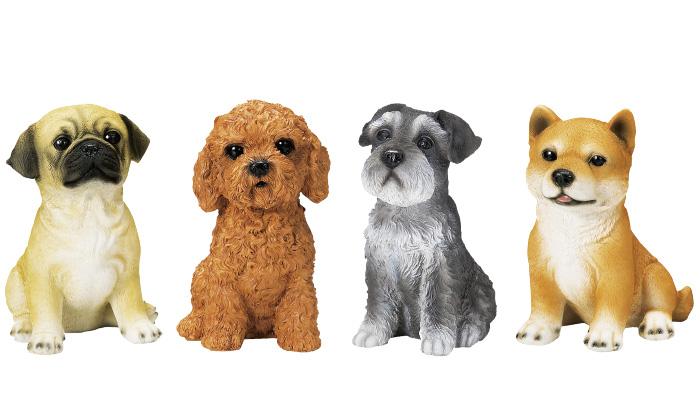 パグ、プードル、シュナウザー、柴犬の写真