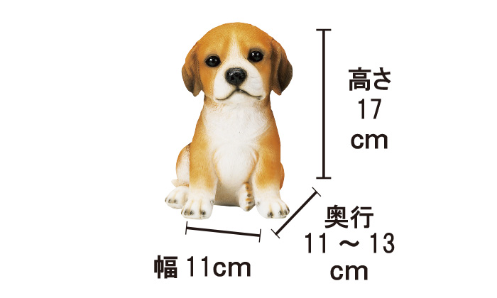 サイズを示す写真