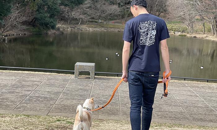 犬の散歩する様子
